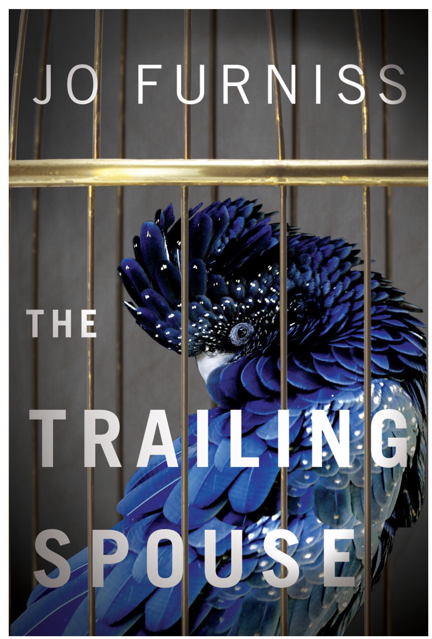 The Trailing Spouse, Jo Furniss, Expat Book Club
